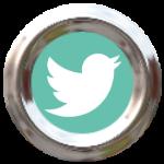 sm type twitter bird