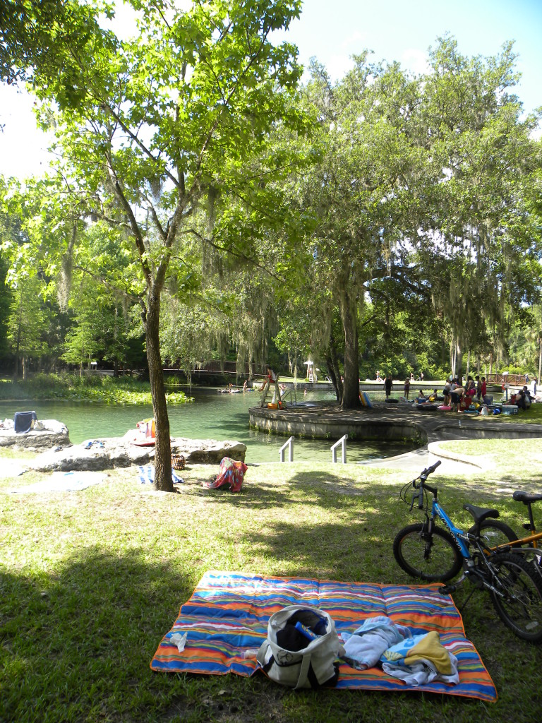 The springs at Kelly Park, Orange county parks, florida springs